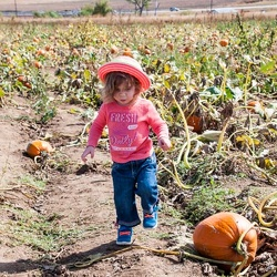 Lucy and the Pumpkin Patch